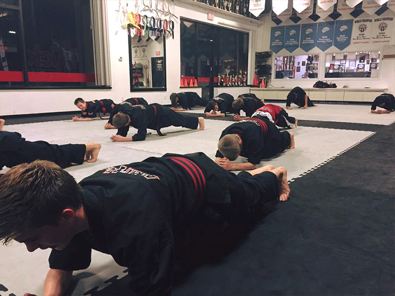 adult martial arts classes in overland park